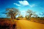 africa_zu1gq.T0