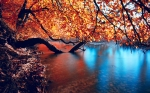 beautiful_autumn_lake-wide