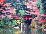 zen_garden_690
