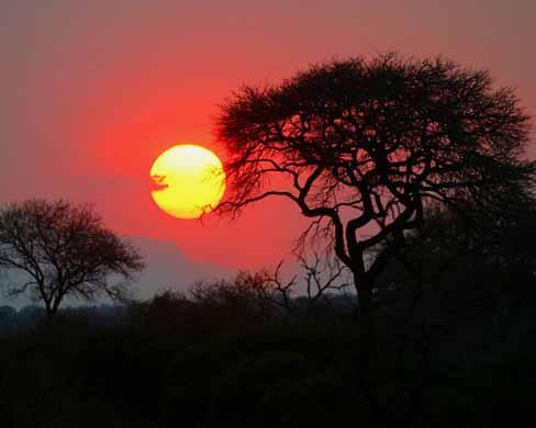 Africa 1 l 39 indifferenza e 39 un crimine facciamo qualcosa for Sud africa immagini