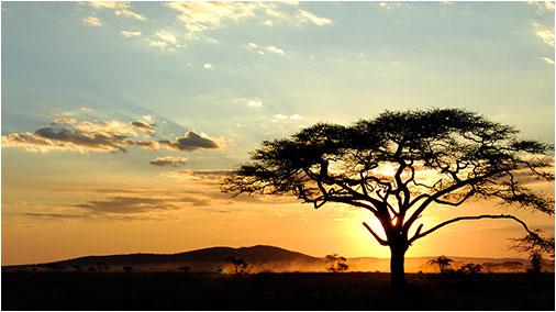 Immagini d africa l 39 indifferenza e 39 un crimine for Foto paesaggi naturali gratis